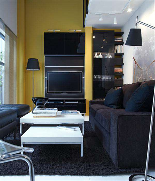 Modern Black Ikea Small Living Room-Design Ideas 2014 pict 006