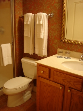remodeling a small bathroom designs Picture 02