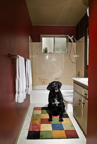 Best small bathroom dark paint color images 09