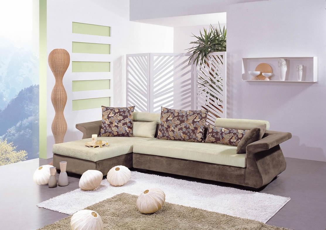 modern living room designs nice color photos 010
