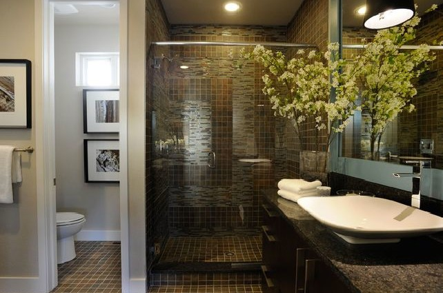 Georgeous Small Master Bathroom Remodeling Ideas With Dark Wall Decor ...