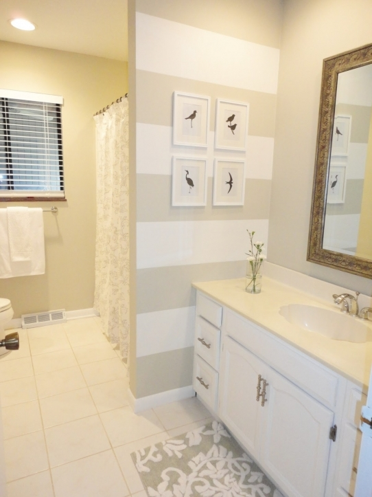 Small Guest Room Ideas With Wonderful Guest Bathroom Ideas And White Vanity Cabinets Also Birds Silhouette 6076