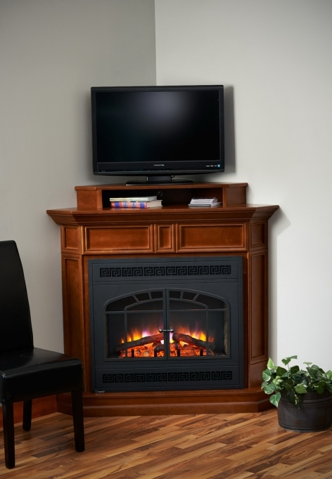 Small Corner Electric Fireplace Tv Stand Design Ideas Pictures 92