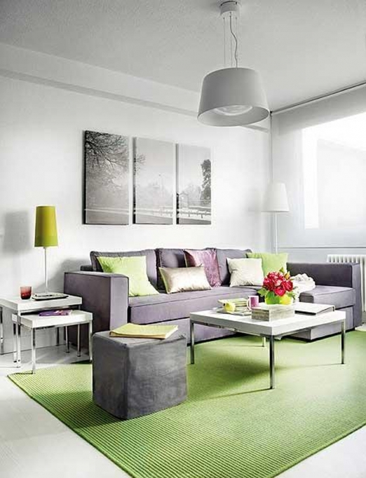 Decorating Ideas For Small Living Rooms Contemporary Mininmalist Design With Nice Grey Sofa And Simple Green Rug 29