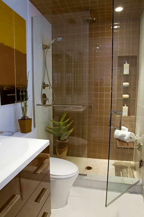 Wonderful Small Bathroom Remodeling Subway Tile Brown Subway Tiles Also Glass Divider And Door Creative