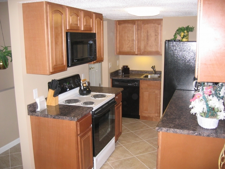 Kitchen Cupboard Designs For Small Kitchens With Marvelous Ginger Prefab Counter Tops 2175