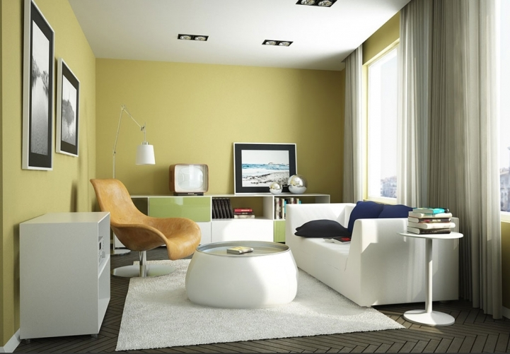 Paint Color Ideas For Small Living Room Inside Great Sofa With Round Coffee Table Also White Area Rug  8938